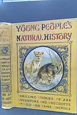 Young People's Natural History: A Popular Story of Animals, Birds, Reptiles, Fishes and Insects, Describing Their Structure, Habitats, Instincts...